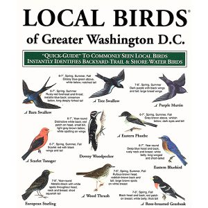 Local birds of greater Washington D.C. pocket-guide