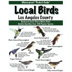 Los Angeles Birds Pocket-Guide