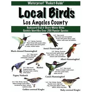 Los Angeles Pocket Bird Guide