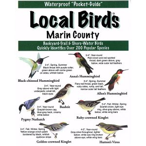 Marin County Birds Pocket-Guide