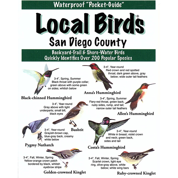 San Diego Birds Pocket-Guide