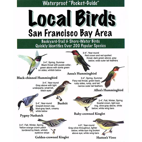 San Francisco Bay area Birds Pocket-Guide