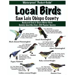 San Luis Obispo Pocket Bird Guide