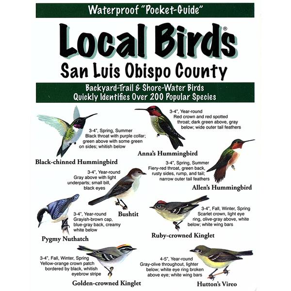 San Luis Obispo Birds Pocket-Guide
