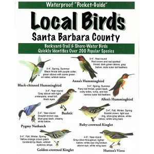 Santa Barbara Pocket Bird Guide