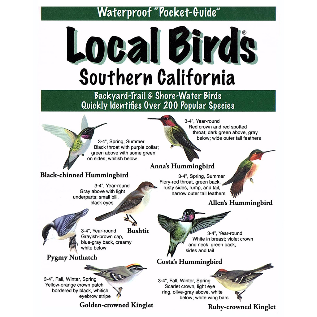 Southern California Birds Pocket-Guide