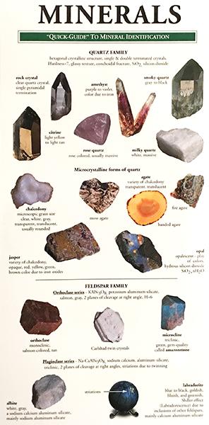 local birds - minerals field guide