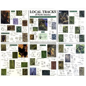 Local Tracks of North America Pocket Guide